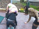 Amateurvideo Das Stöckchen unterm Röckchen - Feminisierung für Versage von LadyVampira