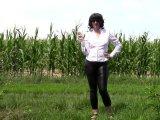 Amateurvideo Pinkeln in Leder Jeans von bondageangel